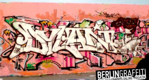 Fotoboom – Mauerpark 4/2009