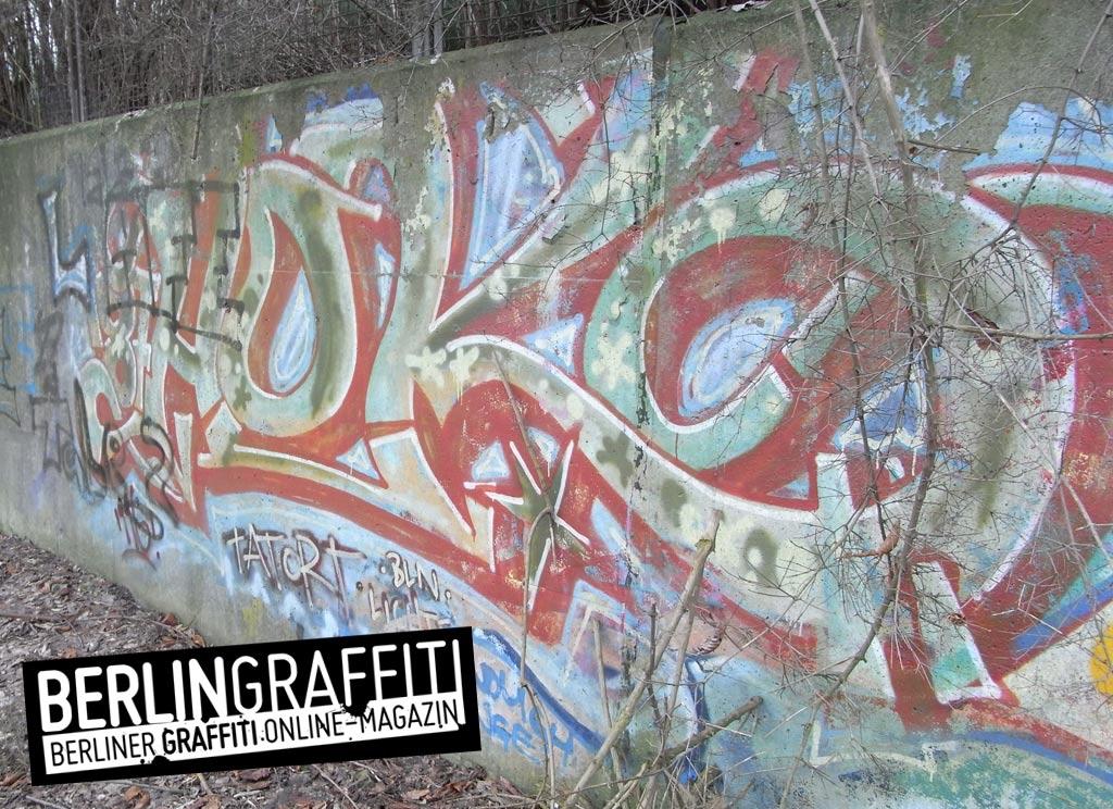 Fotoboom – Lichtenberg #4