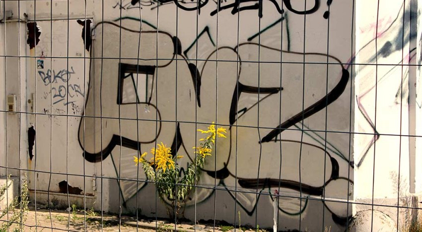 Fotoboom – Die Straßen von Berlin #19