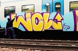 Wolume 1 – A Vandals Way of Life