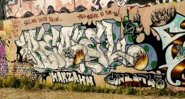 Fotoboom – Buntzecker #16