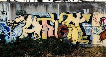 Fotoboom – Buntzecker #18