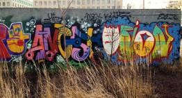 Fotoboom – Buntzecker #17