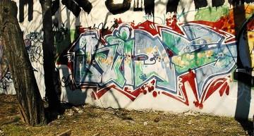 Fotoboom – Buntzecker #21