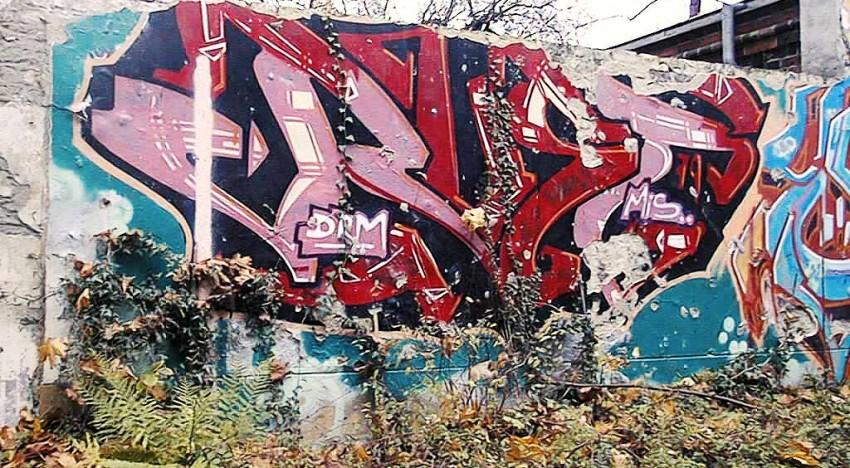 Fotoboom – Buntzecker #23