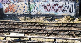 Fotoboom – Berlins Lines #30