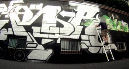 APER: The Massive