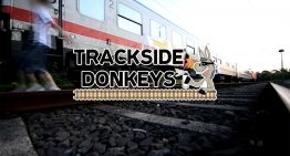 Trackside Donkeys 1-4