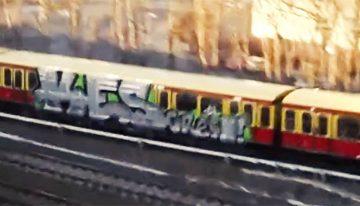 PIRE: Berlin Flavour