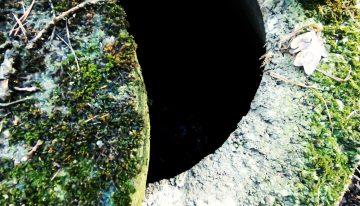 Pigenius Cave: Untergrundsolo Vol. 1